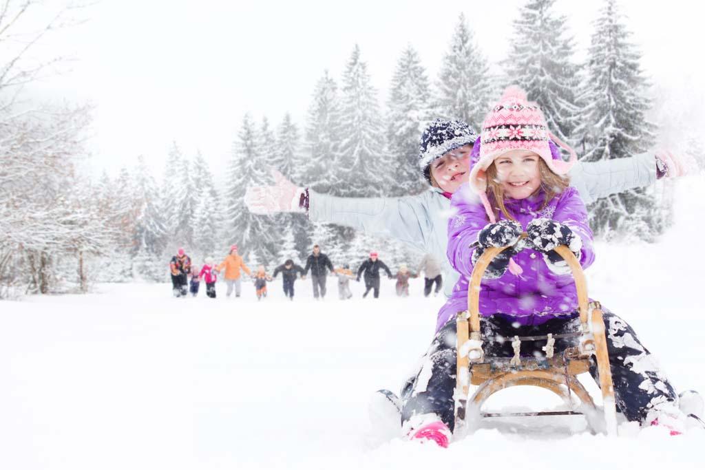 Schnee, Winter, Schwarzwald, Team, Freizeit