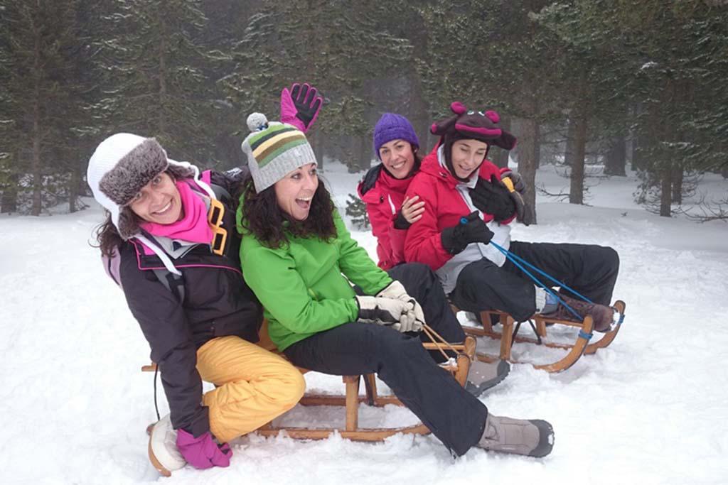 Schnee, Winter, Team, Schwarzwald, Freizeit