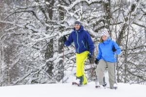 Schneeschuhe, Schnee, Schwarzwald, Winter, Team