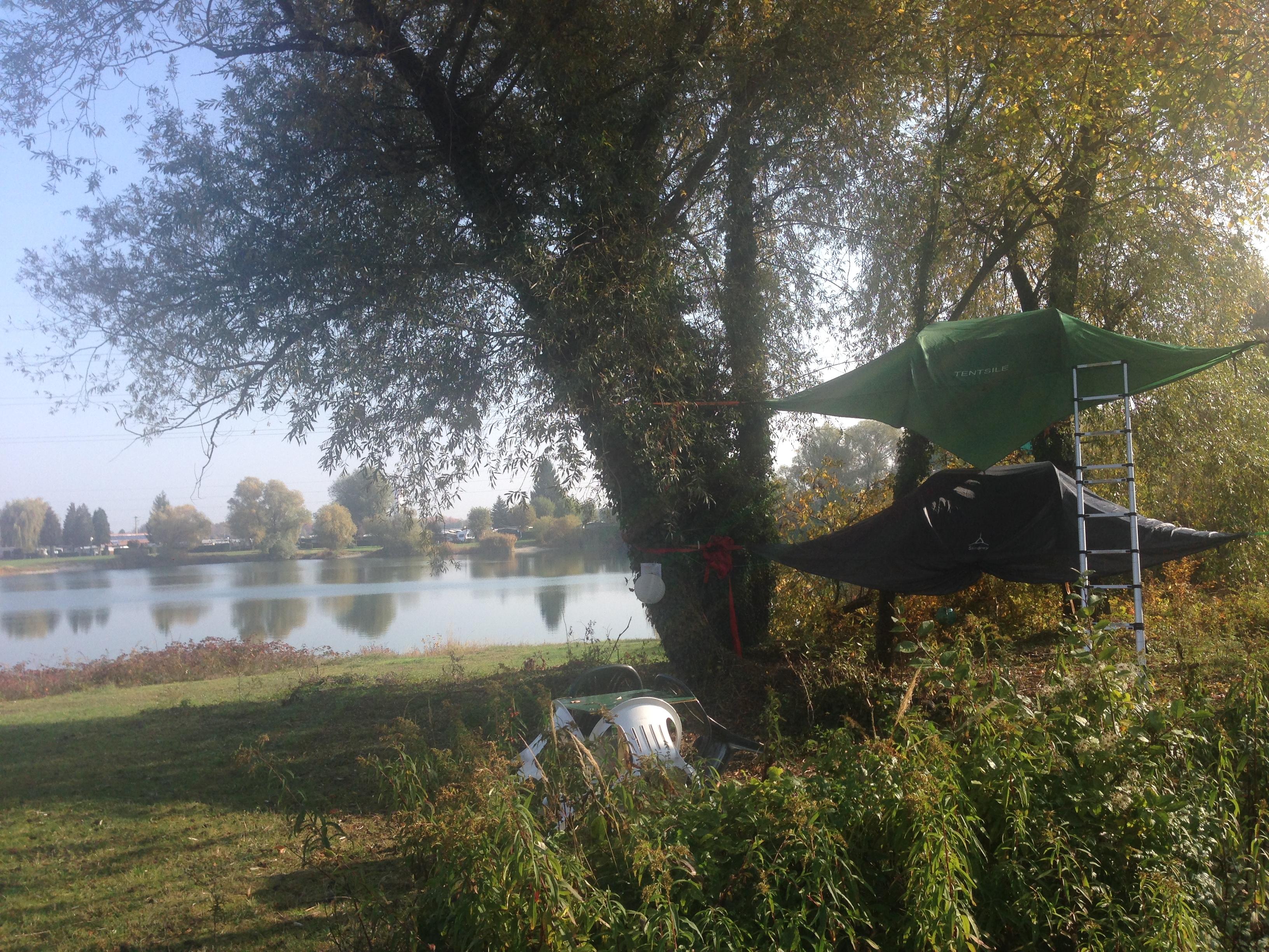 Zelten, Bäme, See, Freizeit, Übernachtung