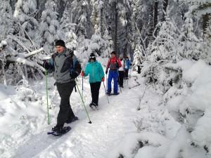 Schneeschuhe, Schwarzwald, Schnee, Winter, Team