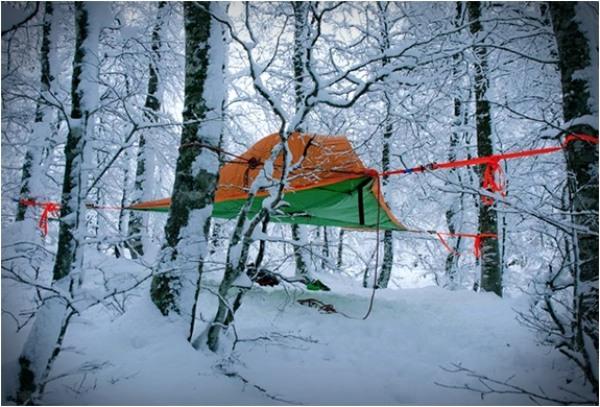 Zelten, Wald, Übernachtung, Freizeit